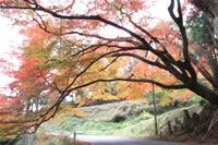 鮫川村のイメージ