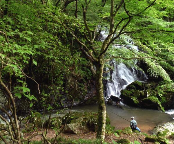 画像:「滝とつり人」