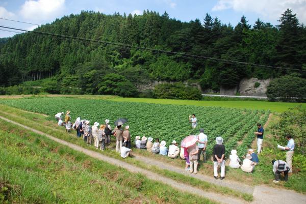 『『『大豆研修会2』の画像』の画像』の画像