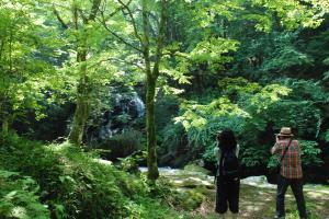 『江竜田の滝を撮影する参加者』の画像
