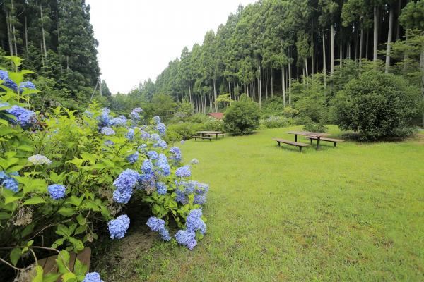 江竜田農村公園
