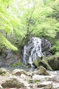 画像:江竜田の滝